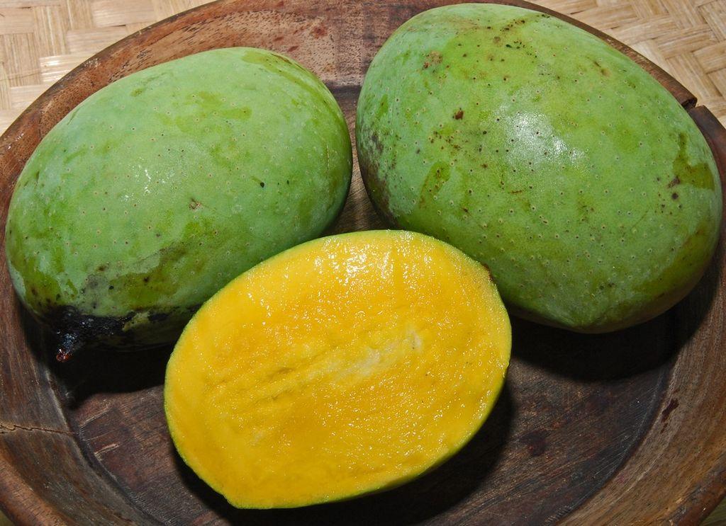Le kuweni - Xoài thơm - Le manguier odorant